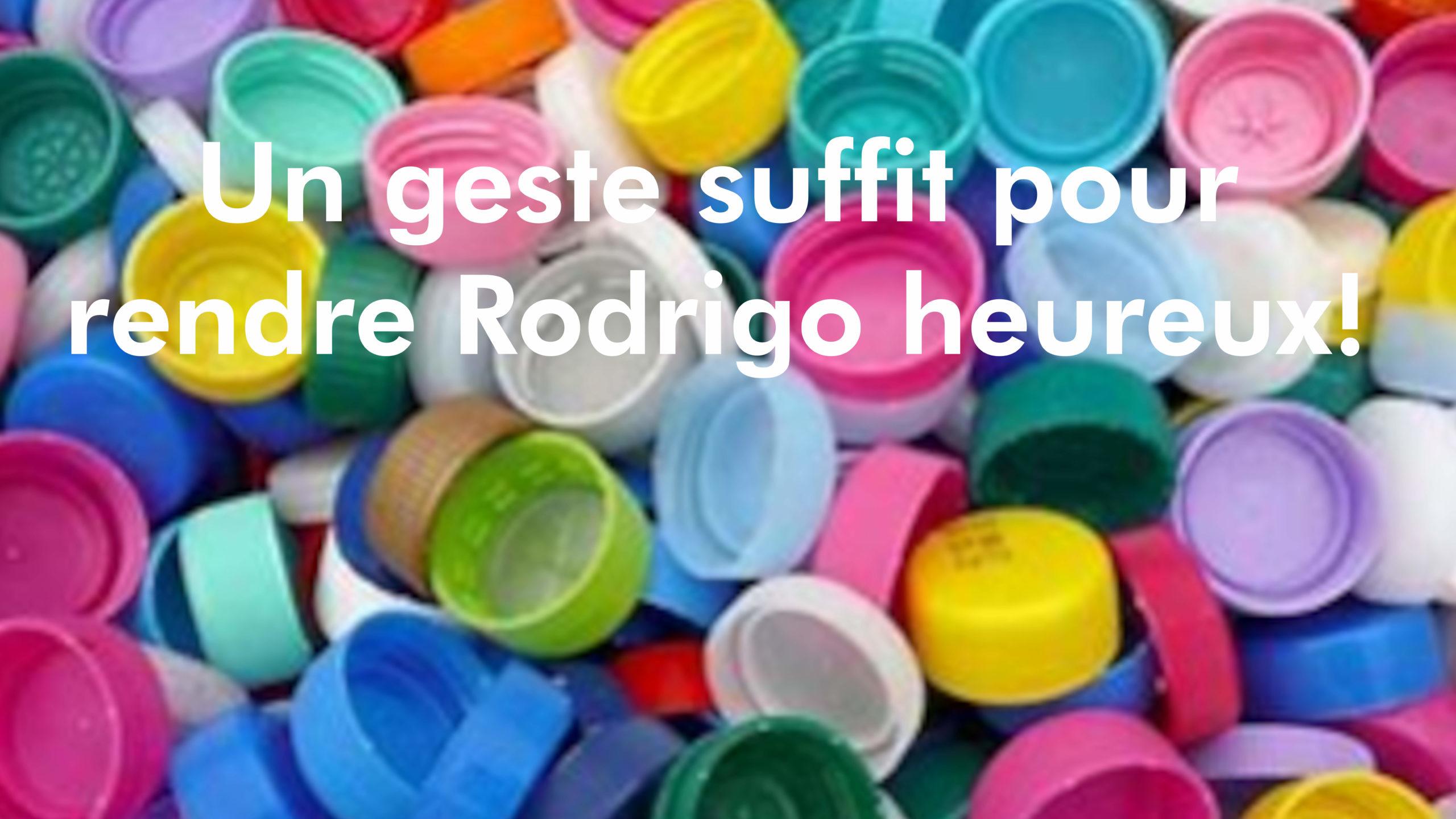 bouchons Rodrigo 1